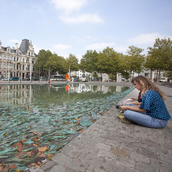 Antwerpen Ontketend - copyright Sepp Van Dun