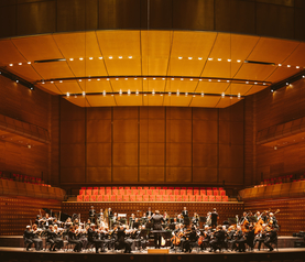 Antwerp Symphony Orchestra - copyright Antwerp Symphony Orchestra & Jesse Willems